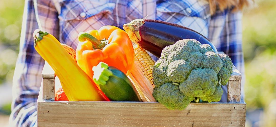 Bio Caja Sunrise Fruits Company