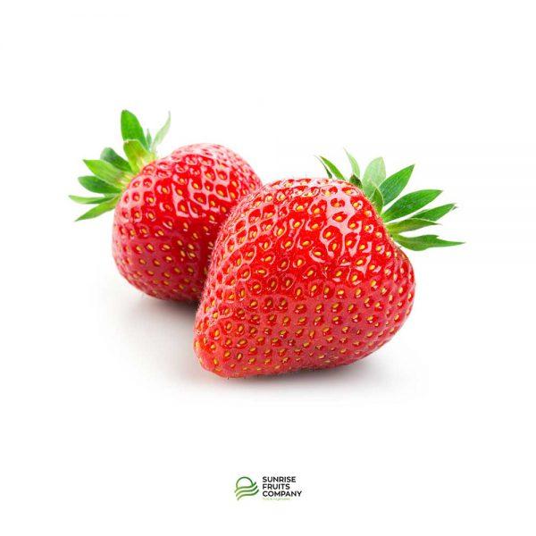 Productos Fresas Sunrise Fruits Company